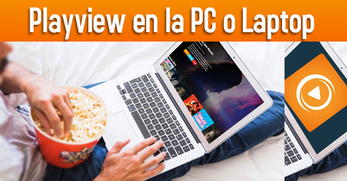 playview para laptop